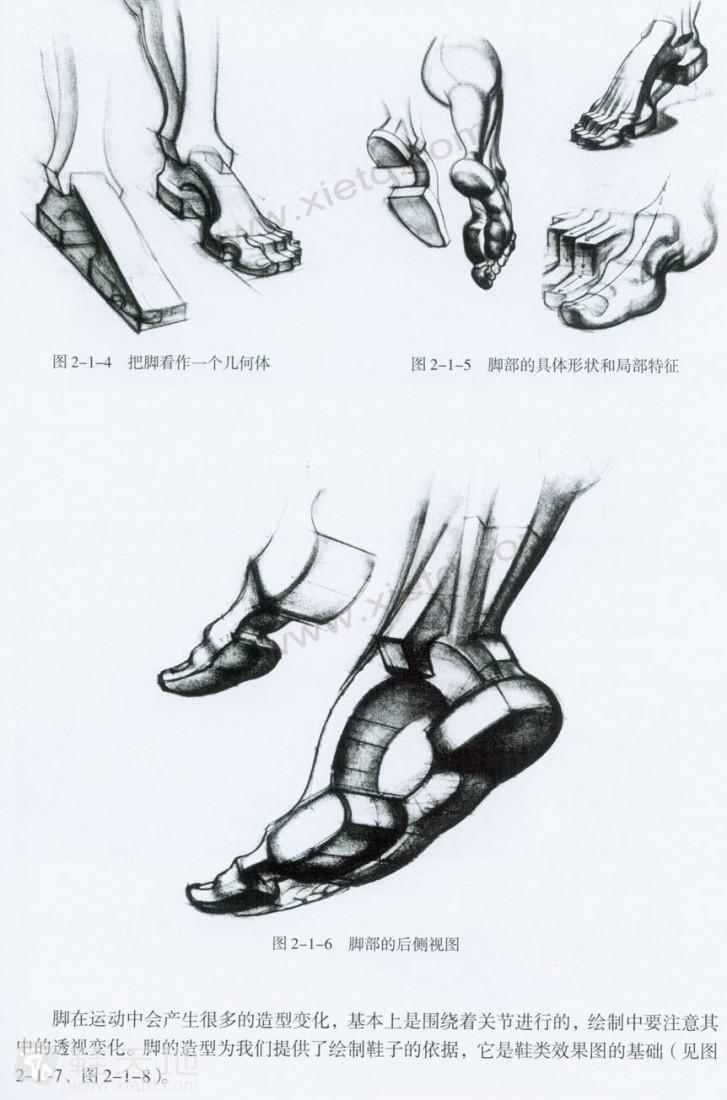 本书内容包括鞋的基本结构、绘制方法、素描技法、色彩技法、视觉表图片