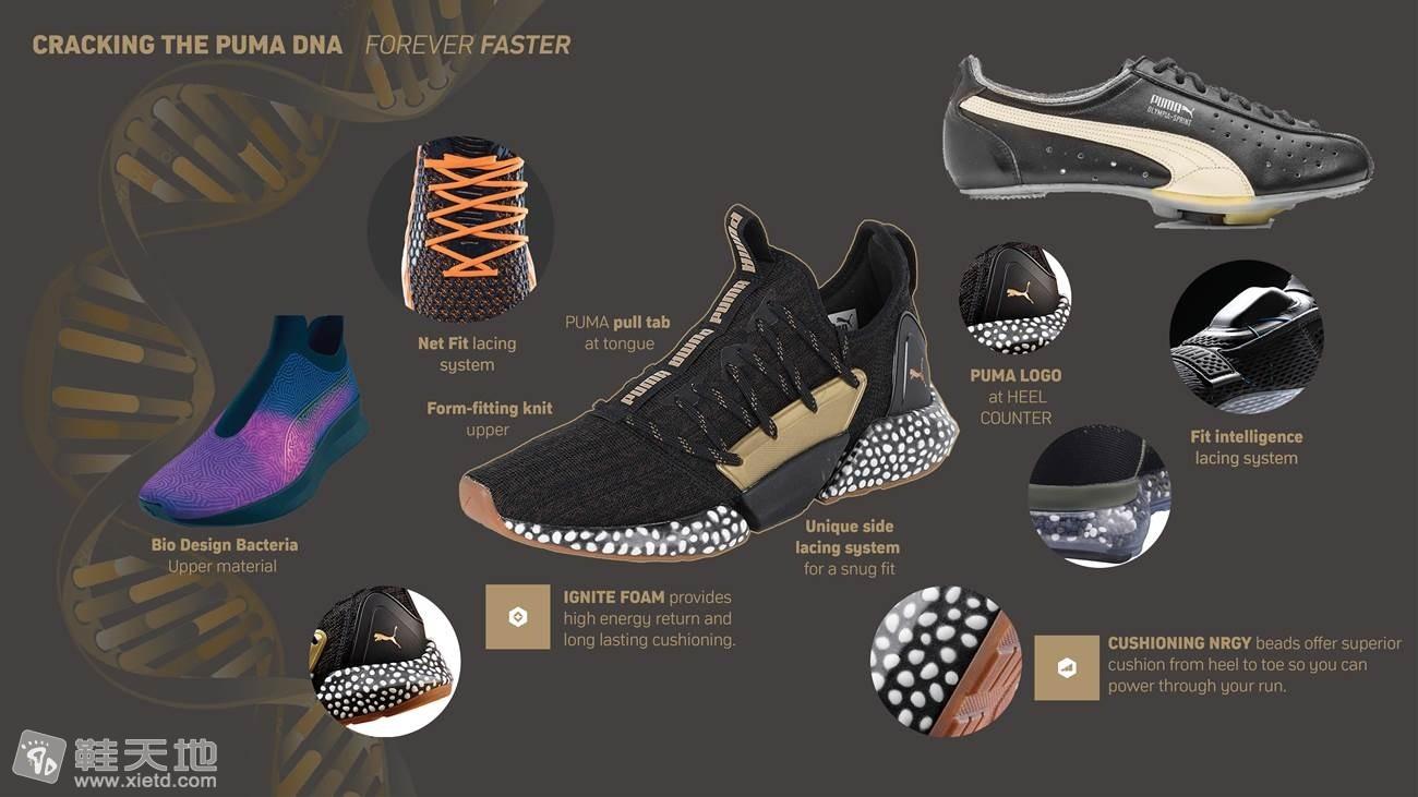 Puma Dune Digger Ultra-marathon desert running shoes (9).jpg